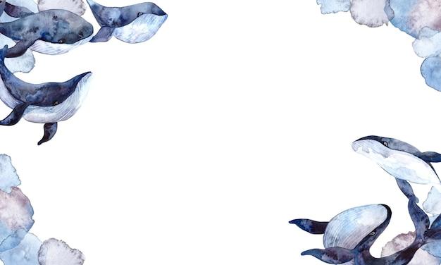 Cornice dell'acquerello con balene blu e macchie di acquerello, illustrazioni dipinte a mano isolati su sfondo bianco, animali subacquei realistici.