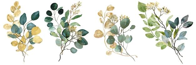 Mazzi di eucalipto con semi di acquerello verde e oro. verde primaverile. illustrazione floreale di nozze.