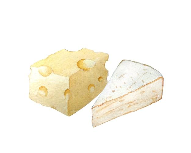 Blocchi di formaggi disegnati a mano dell'acquerello.
