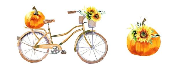 Acquerello dipinto a mano zucche bicicletta e girasoli illustrazione isolato su uno sfondo bianco