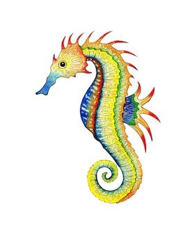 Illustrazione ad acquerello di un cavalluccio marino multicolore pesce di razza abitanti dell'oceano