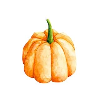 Clipart di zucca arancione dell'acquerello isolato su priorità bassa bianca. illustrazione di verdure. elemento di design del raccolto autunnale. clipart di halloween.
