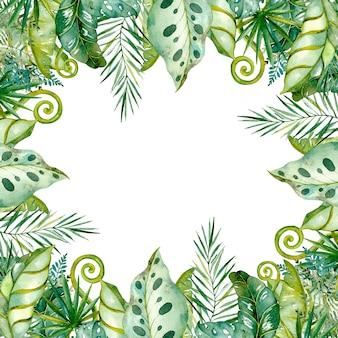 Acquerello dipinto foglie tropicali e rami.sfondo della cornice, collezione floreale esotica colorata di palma, monstera, foglie di banano.