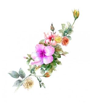 La pittura ad acquerello di foglie e fiori, su sfondo bianco