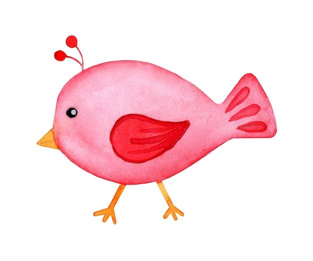Scarabocchio di uccello rosso dipinto ad acquerello caricatura in stile cartone animato uccello carino decorativo colorato