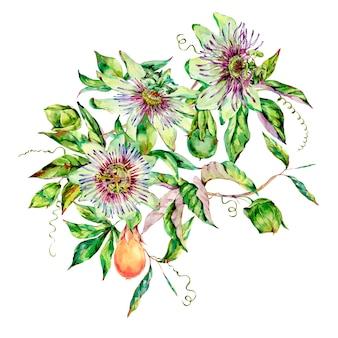 Cartolina d'auguri dell'acquerello passiflora, fiori, foglie. floreale vintage