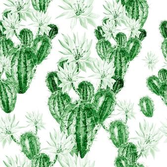Modello acquerello con cactus. illustrazione
