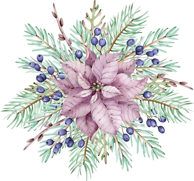 Fiore dell'acquerello rosa poinsettia con rami di pino e bacche blu. bouquet di natale. carta di inverno del nuovo anno isolata sui precedenti bianchi.
