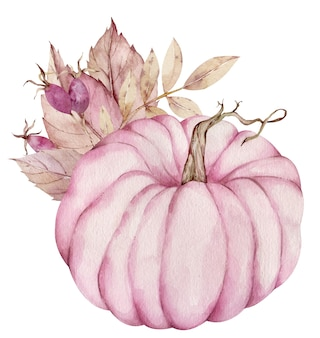 Zucca rosa dell'acquerello decorata con bacche rosa e foglie secche isolati su sfondo bianco.