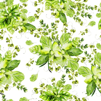 Reticolo senza giunte dell'acquerello con erbe. illustrazione