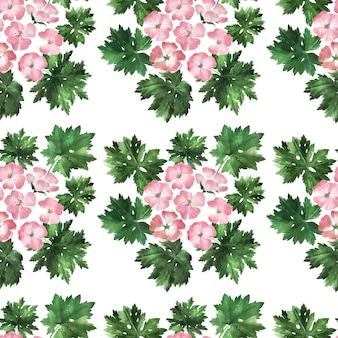 Reticolo senza giunte dell'acquerello con infiorescenze, fiori, boccioli e foglie della pianta del geranio