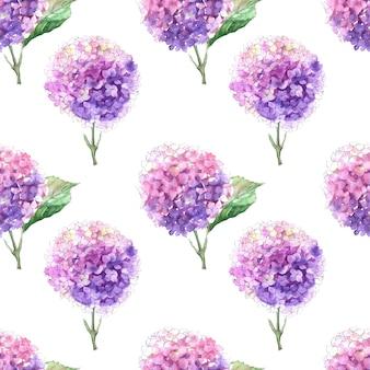 Reticoli senza giunte dell'acquerello con rami fioriti di ortensie. infiorescenze luminose