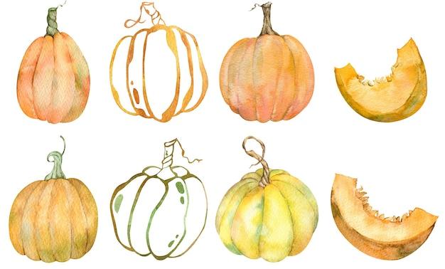 Insieme dell'acquerello di zucche arancioni isolate. ringraziamento raccolta del raccolto di zucca. insieme di autunno.