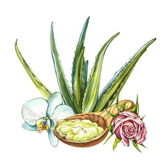 Clipart dell'acquerello spa - collezione di prodotti ed elementi spa e di bellezza