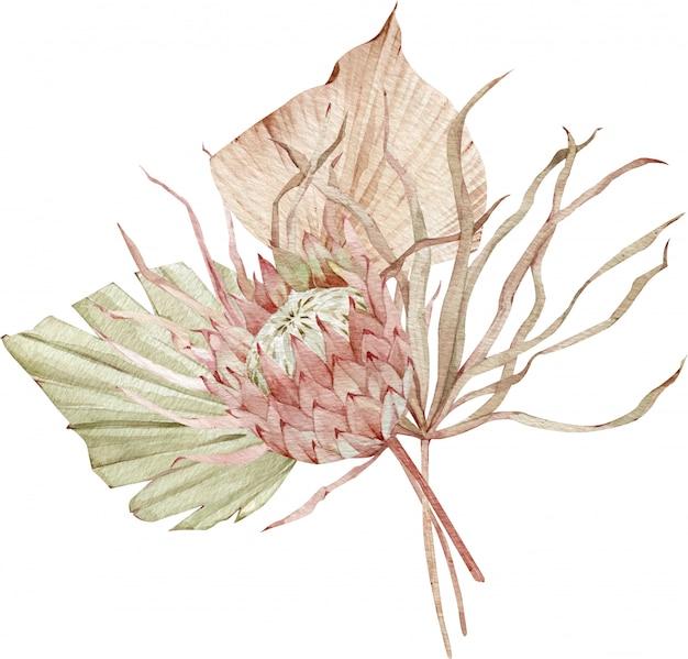 Composizione tropicale dell'acquerello con foglie di palma fan e fiore di protea. illustrazione di foglie secche esotiche.