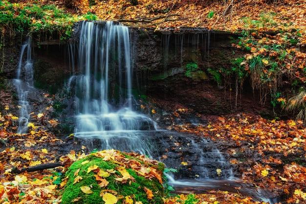 Cascata alla luce del sole d'autunno. mondo della bellezza. carpazi. ucraina