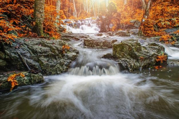 Cascata e flusso blu nella foresta gialla tailandia