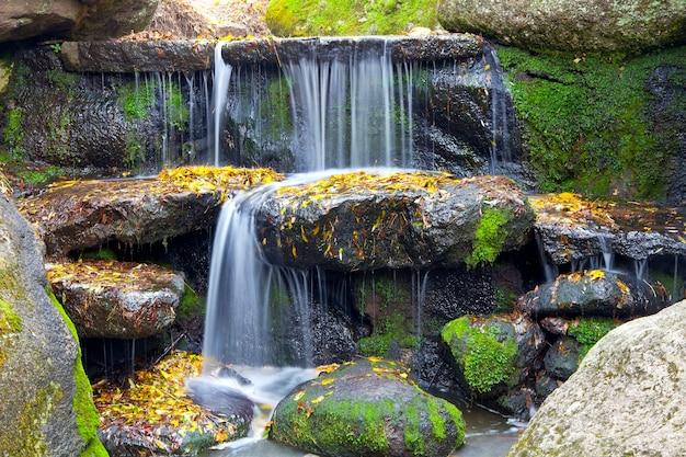 Cascata nella foresta. bellissimo sfondo di pietra, acqua, muschio.