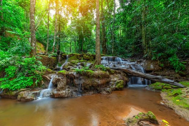 Cascata nella foresta pluviale, pa wai waterfall, tak province, tailandia