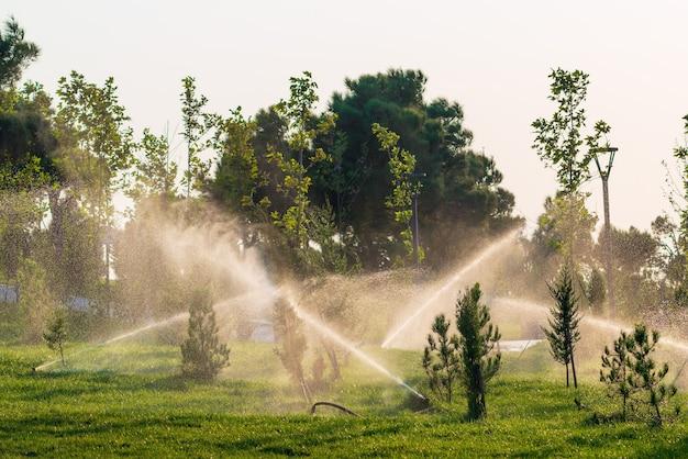 Irrigazione dei prati in un parco cittadino