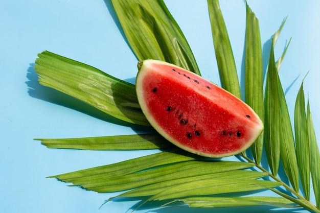 Anguria su foglie di palma tropicale sulla superficie blu