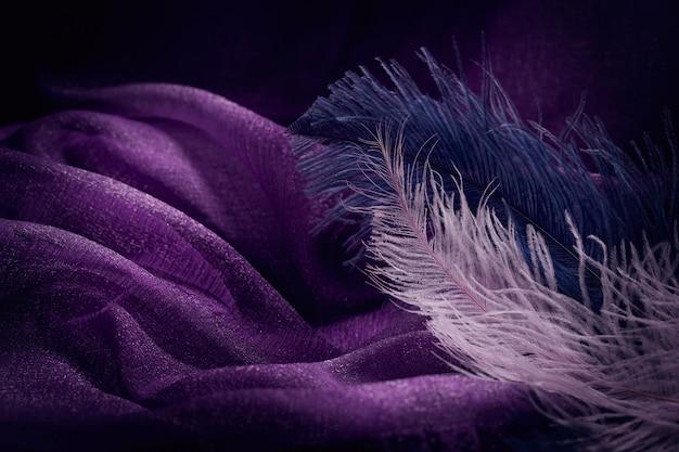 Onda di elegante trama tessile viola con belle piume rosa e blu. sfondo bello, delicato e gentile