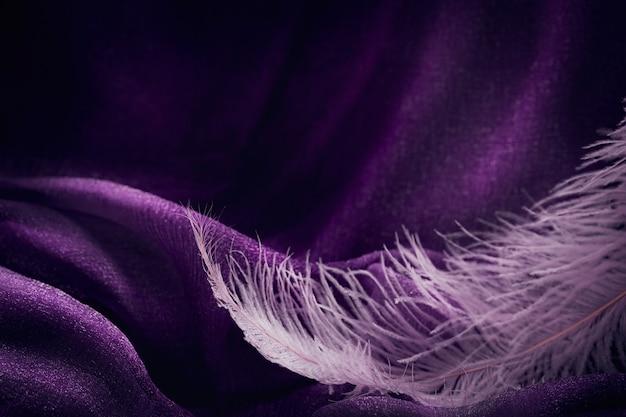 Onda di elegante trama tessile viola con belle piume rosa. sfondo bello, delicato e gentile
