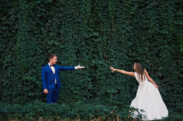 Sposi sullo sfondo del muro di verde