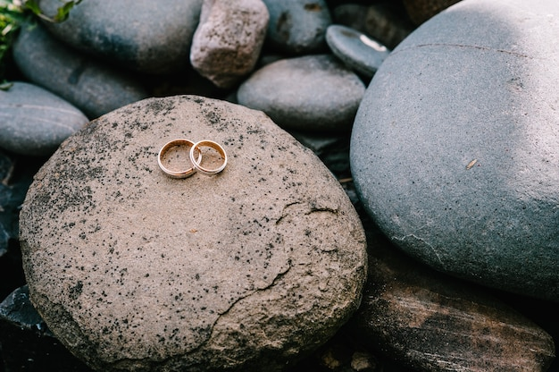 Anelli di fidanzamento in argento dorato di nozze.