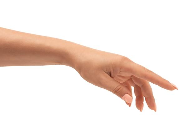 La mano femminile ben curata con una manicure in una posa graziosa e rilassata è isolata su uno sfondo bianco. vista ritagliata della mano femminile isolata su bianco
