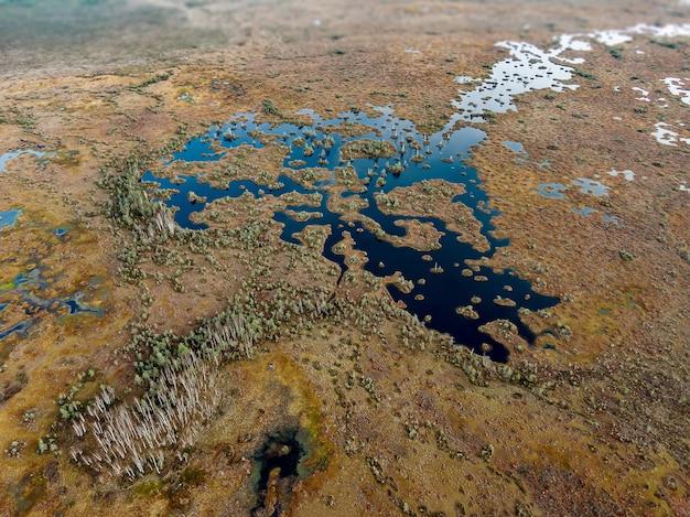 Zona umida, fotografia aerea. paludi sulla terra.