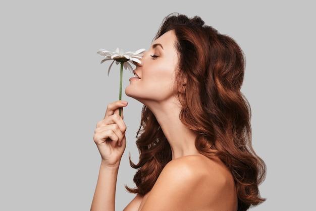 Che profumo fantastico! attraente giovane donna che odora di camomilla e sorride mentre sta in piedi su uno sfondo grigio