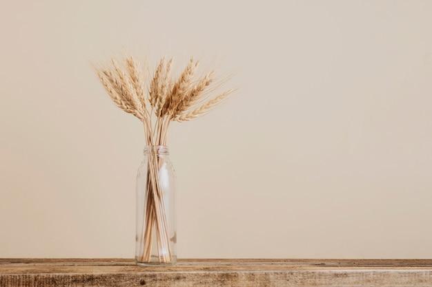 Spighe di grano in un vaso di vetro su beige, copia dello spazio.