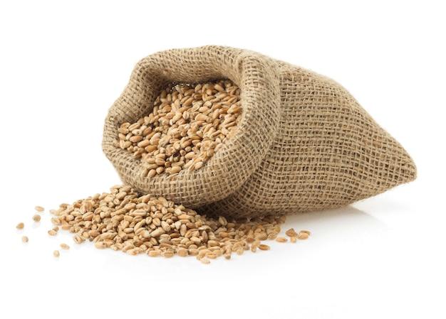 Chicco di grano isolato su superficie bianca