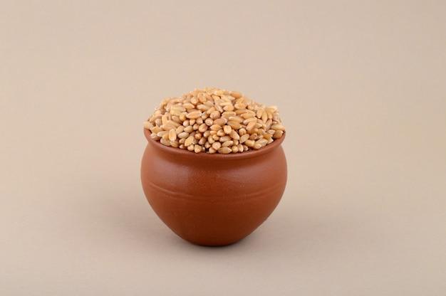Chicchi di grano in pentola di terracotta su sfondo color crema. avvicinamento.