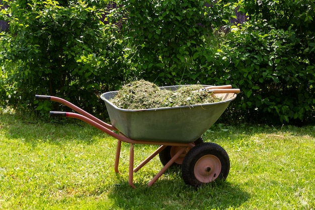 Carriola con erba e foglie giardinaggio taglio stagionale di alberi, cespugli e altre piante