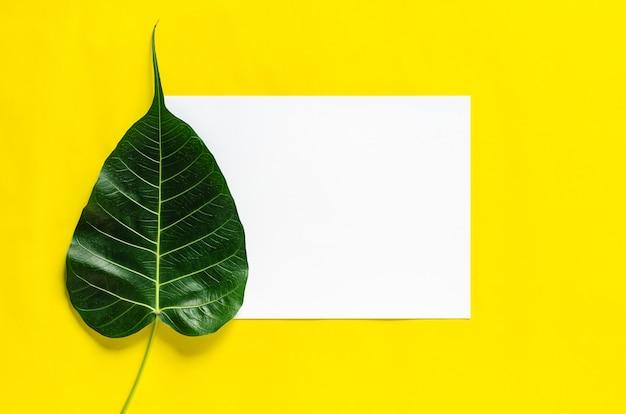 Carta bianca bianca con foglia di bodhi su sfondo giallo.
