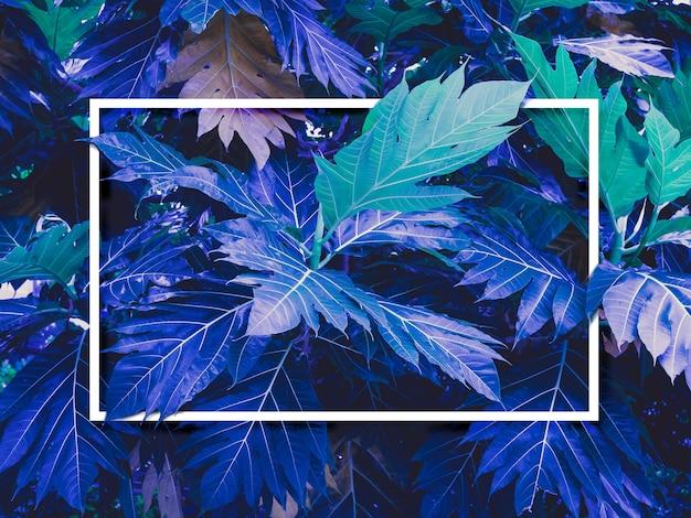 Cornice quadrata vuota bianca su sfondo di foglie verdi e blu fantastiche