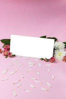 Carta bianca su sfondo rosa. rettangolo bianco sullo sfondo di rose rosa e crisantemi bianchi, petali di crisantemo. un posto per il testo. buono regalo. targa vuota