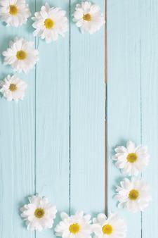Crisantemo bianco su fondo di legno blu
