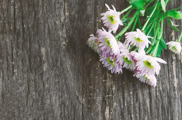 Fiori bianchi del crisantemo su baclground di legno
