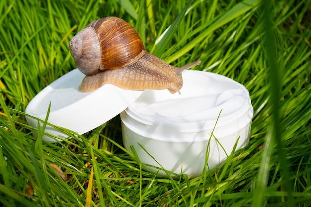 Crema bianca con mucina di lumaca sull'erba verde del giardino Foto Premium