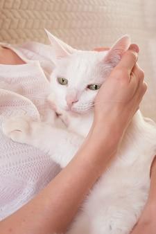 Simpatico gatto bianco tra le braccia della donna. il concetto di cura degli animali domestici, zoopsicologia, medicina veterinaria.
