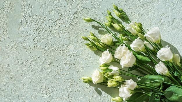 Piccole rose bianche delicate su un fondo leggero dell'intonaco, spazio della copia, vista superiore. biglietto di auguri per la festa della mamma, compleanno, san valentino