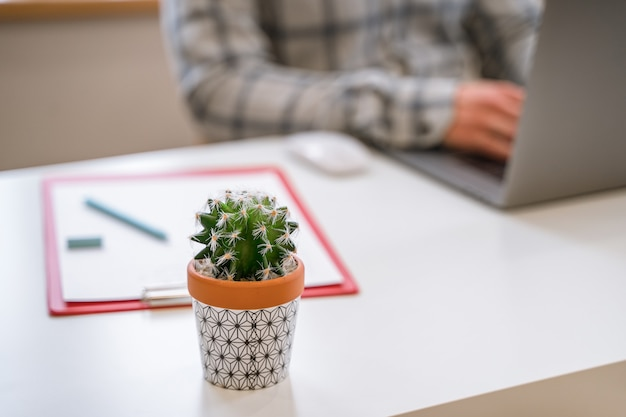 Scrivania bianca con un focus su un cactus con un uomo che lavora su un laptop in background