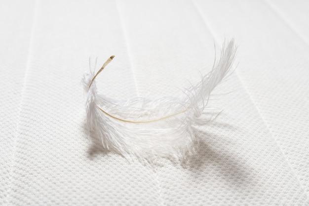 Piuma bianca su morbido materasso