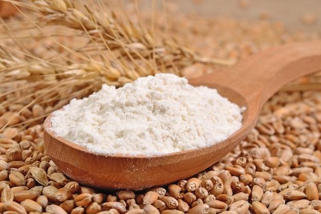 Farina bianca in un cucchiaio di legno e spighe di grano su uno sfondo di chicchi di grano