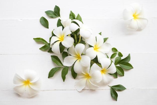Fiori bianchi frangipani su fondo in legno bianco