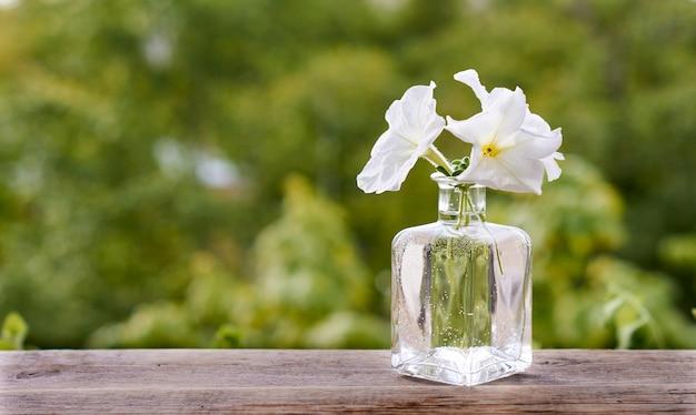 Fiori bianchi in una bottiglia di vetro su un tavolo di legno.