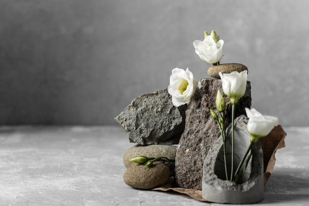 Fiori bianchi con rocce e copia spazio